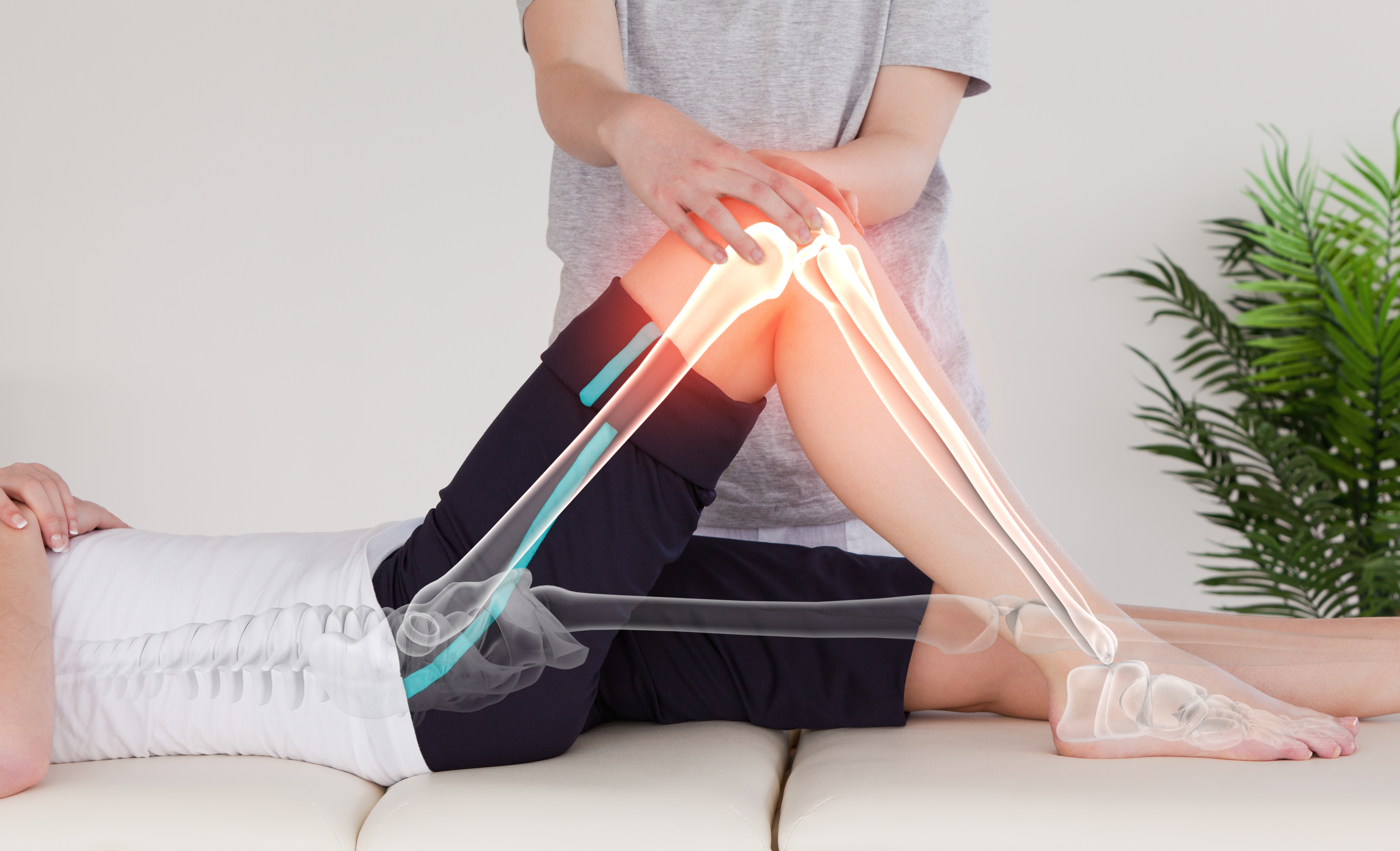 physical therapist adjusting knee